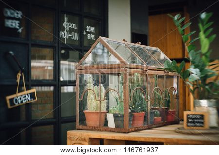 film warm tone effected photo with blurred edge effect from petzval lens of cute cactus terrarium planting in little antique glass house with rusted for decoration