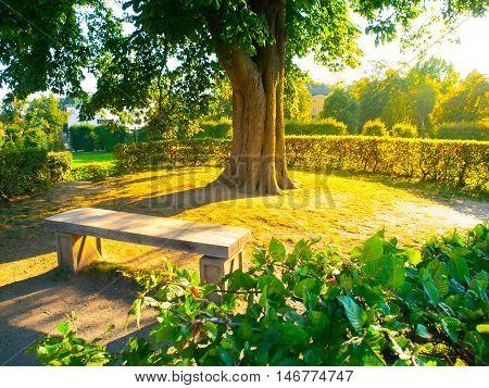 Garden bench under the tree in summer time park, Kormeriz flower garden, Czech Republic