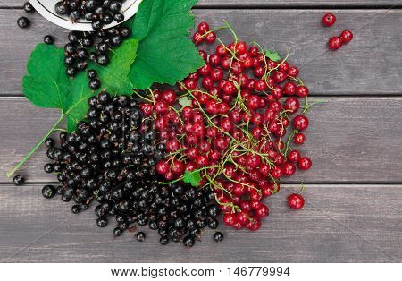 Fresh ripe red and black currants heap on rustic wood background. Natural organic berries with green leaves scattered on weathered grey wooden table, new berry harvest top view with copy space