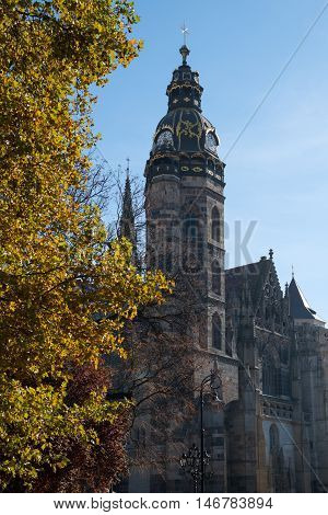 Saint Elisabeth Cathedral (Kosice Slovakia) in autumn season. Yellow tree is in foreground blue sky - in background. The largest church in Slovakia.
