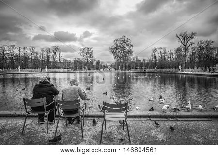 Louvre Garden fountain monochrome scenery - Black and white image in the Louvre Garden from Paris France where a Parisian couple feeds a myriad of city birds pigeons ducks and seagulls.