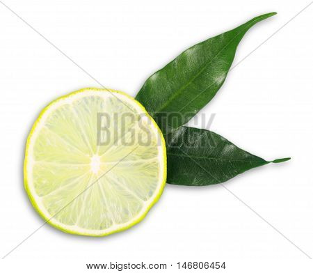 Half of a lime with leaves protruding - isolated image