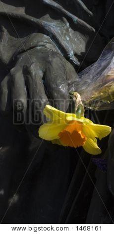 Eternal Flower Holder