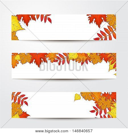 Set of banner templates with fall leaves, sketch style vector illustration isolated on white background. Red, yellow and orange maple, aspen, oak and rowan leaves on horizontal banners