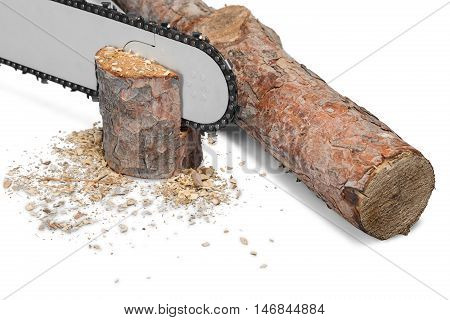 Closeup of a Chainsaw Cutting a Log