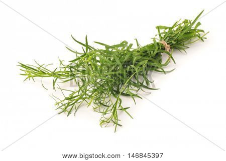 Bunch of fresh tarragon herbs isolated on white
