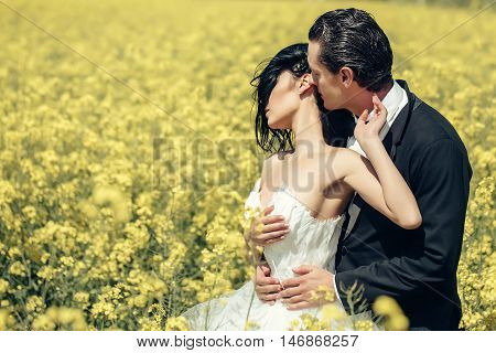 Wedding Couple In Field Yellow Flowers