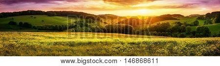 Panoramic sunset over a vast blossoming meadow landscape with hills on the horizon and colorful sky