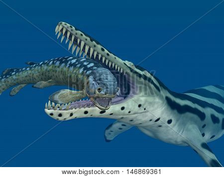 Computer generated 3D illustration with the extinct pliosaur Kronosaurus eating the extinct fish Rhizodus