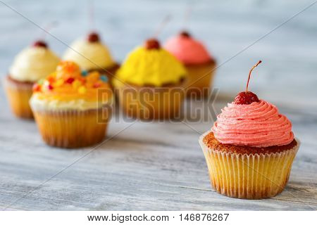 Cupcake with pink frosting. Cherry on top of dessert. Cure from bad mood. Fresh baked confectionery.
