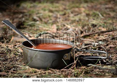 hike soup in the wild forest, travel time