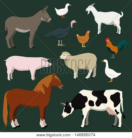 Cartoon farm animals and poultry vector set. Illustration of horse cow sheep goat donkey pig turkey chicken rooster duck goose.