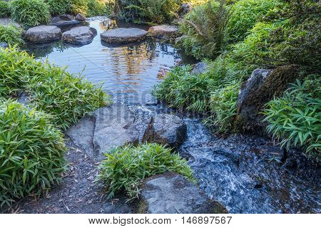 A small stream flows into a placid pool.