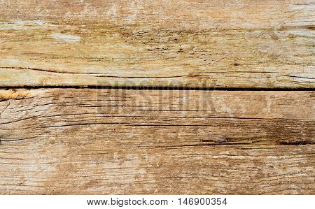 Closeup Old Wood texture. Cracky old rustic wood