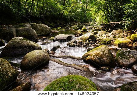 River landscape in the mountainous region of taiga of Siberia. Russian Far East.