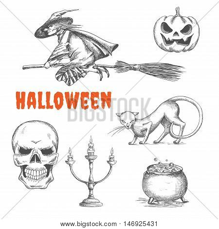 Halloween witch flying on broom, scary pumpkin with fire eyes, black cat, human skeleton skull, candlestick, cauldron with boiling magic potion. Halloween decoration symbols in pencil sketch