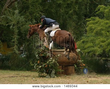 Cross Country Jumper
