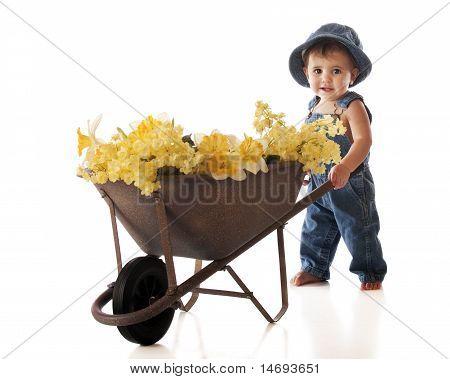 Flower Pusher