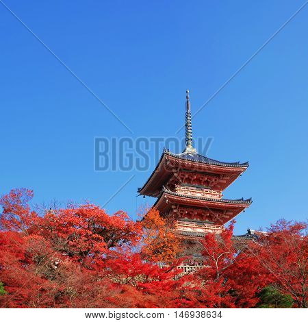 The Pagoda At Kiyomizu-dera Temple With Colorful Red Leaves