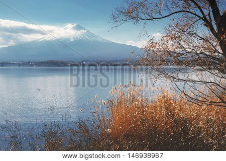 Mount Fuji View From Around The Kawaguchi Lake In Autumn With Retro Style Effect