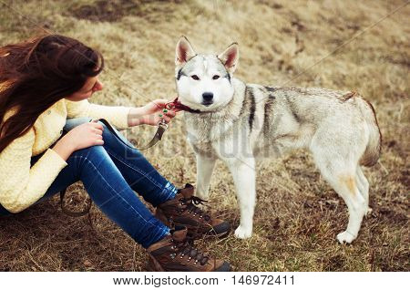 Girl In The Park Their Home With A Dog Husky. The Girl With The