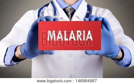 Doctor's hands in blue gloves shows the word malaria. Medical concept.