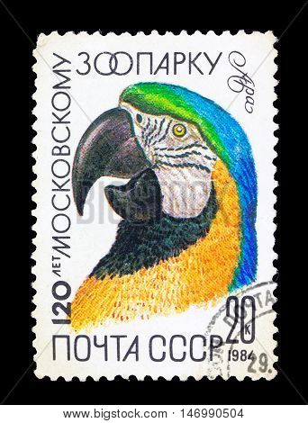 Ussr - Circa 1984