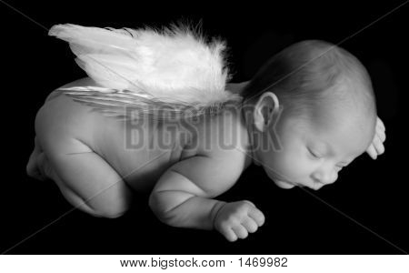 Angelic Infant Sleeping