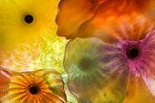stock photo of stained glass  - Orange yellow and brown coloured Glass flower pattern - JPG