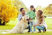 family, pet, domestic animal and people concept - happy family with labrador retriever dog on walk i poster
