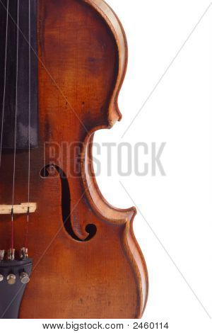 Violine Isolated