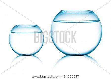 close-up vista das duas Taças de peixes no fundo branco