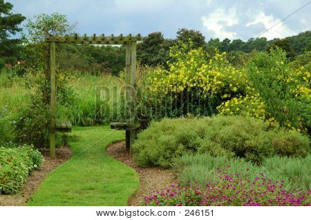 Garden Path with Trellis