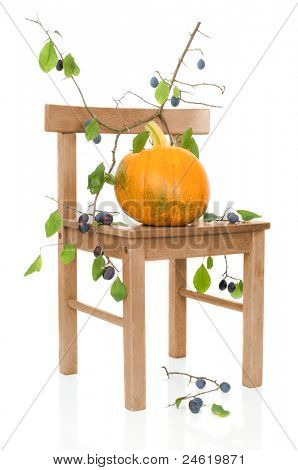 Ripe autumnal pumpkin on rustic chair with damsons on white background