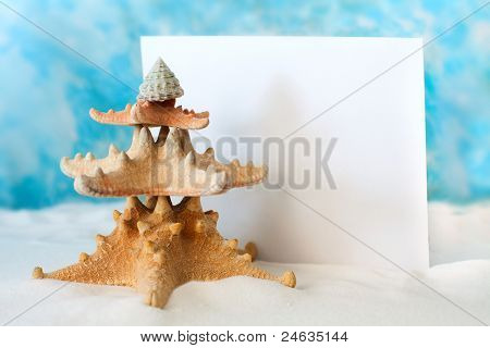 Christmas Tree from starfish