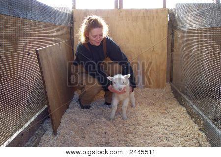 Woman And Lamb