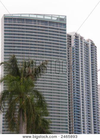 Skyscraper In Florida