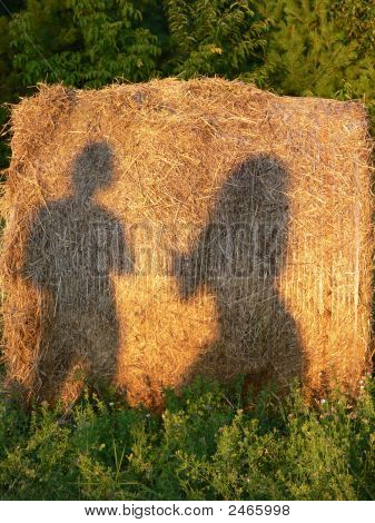 Sexy Country  Girls Flirting In The Hay Field
