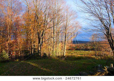 late fall autumn scenery