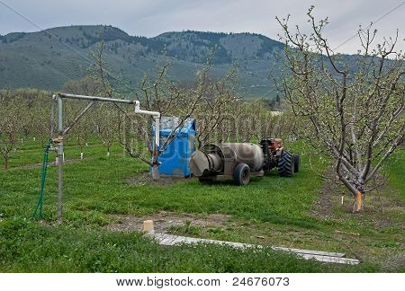 Apple Orchard Scene In Spring With Tractor And Chemical Sprayer