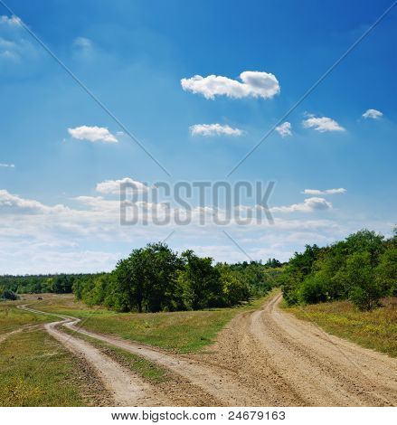 two rural roads go to horizon under cloudy sky