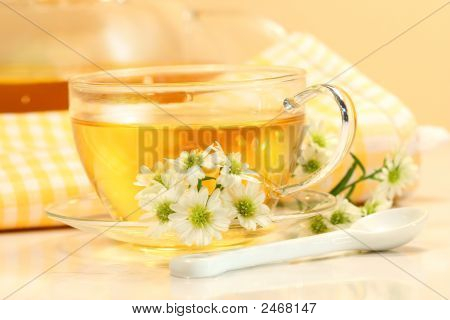 Glass  Cup With Herbal Tea