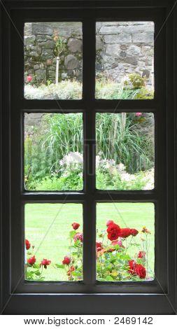 die Garten-Fenster