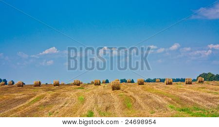 Round Bale Of Straw In The Field