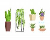 Set Of Various Decorative Home And Office Pottery Plants. Green Colored Colorful Houseplants For Dec poster