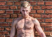 Builder With Sexy Muscular Torso, Brick Wall On Background. Athlete With Sexy Nude Torso. Hard Worke poster