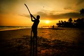 boy playing cricket at sunset on tropical beach - national sport in Sri Lanka poster