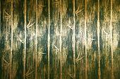 Постер, плакат: Зеленый бамбук стены Текстура