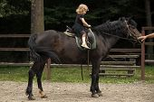 Equine Therapy, Recreation Concept. Girl Ride On Horse On Summer Day. Child Sit In Rider Saddle On A poster