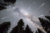 A View Of A Meteor Shower And The Milky Way With A Pine Trees Forest Silhouette In The Foreground. N poster